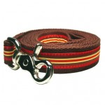 Ticking Stripe Lead - Small