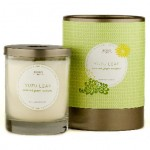 Yuzu Leaf by KOBO Candles
